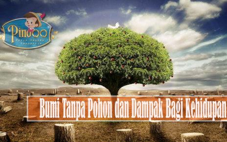 Bumi Tanpa Pohon danDampak Bagi Kehidupan
