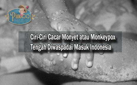 Ciri-Ciri Cacar Monyet/Monkeypox Tengah Diwaspadai Masuk Indonesia