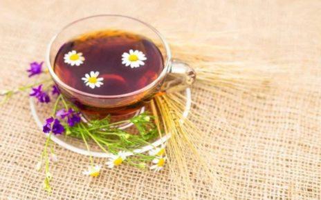 8 Obat Asam Lambung Alami (Dijamin Ampuh)