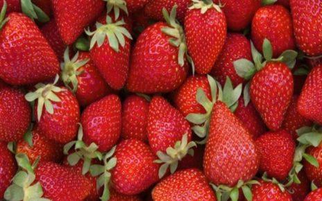 9 Khasiat Buah Stroberi untuk Kesehatan