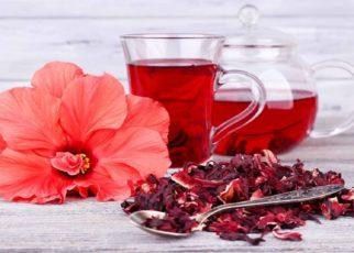 10 Manfaat Teh Bunga Sepatu, Kaya Antioksidan