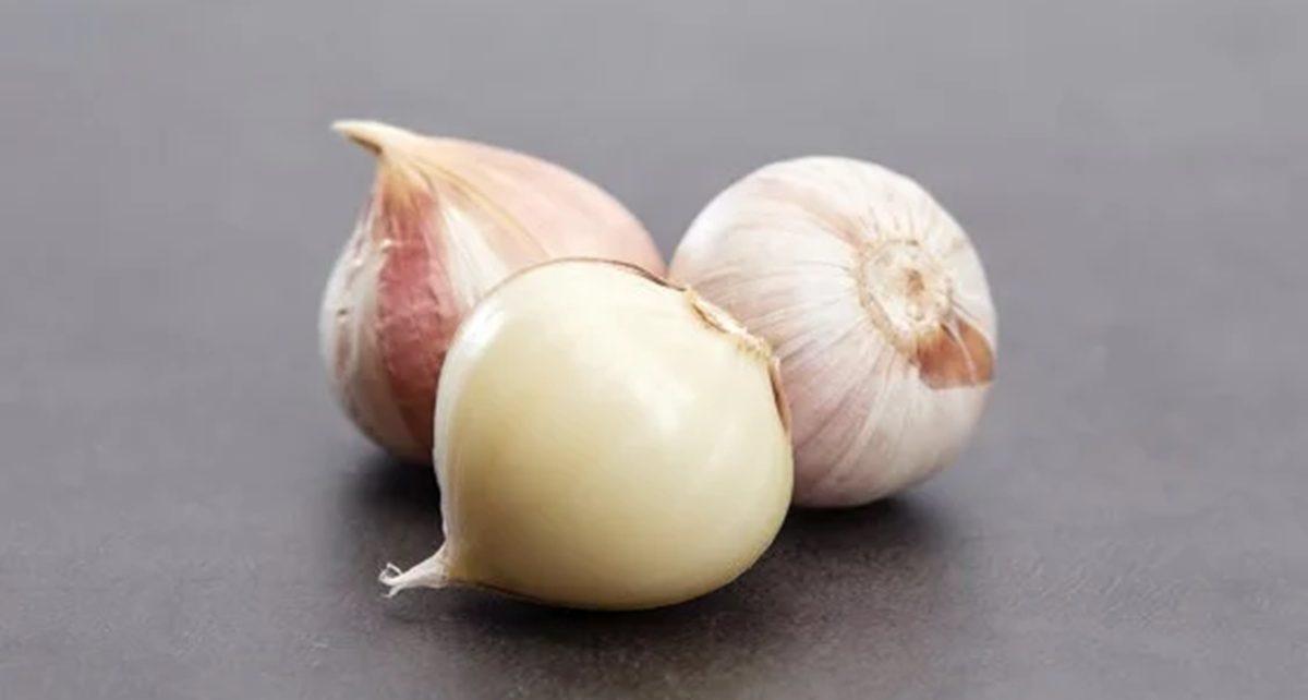 12 Manfaat Bawang Putih Tunggal Bagi Tubuh, Mengobati Asma dan Meningkatkan Kesuburan
