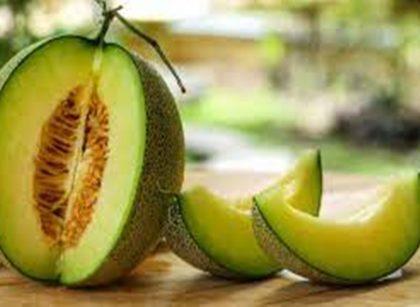 10 Manfaat Melon untuk Kesehatan Tubuh, Salah Satunya Bisa Cegah Kanker